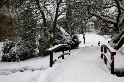 Musim dingin, Kronberg, Jerman